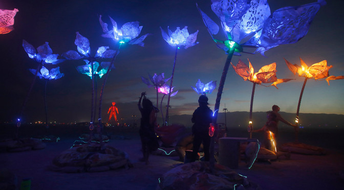 Flowers at Burning Man 2014